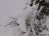 Schneewinter 2011, Saudi Arabien 02